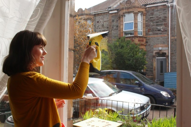 cleaning indoors window vac  (1)